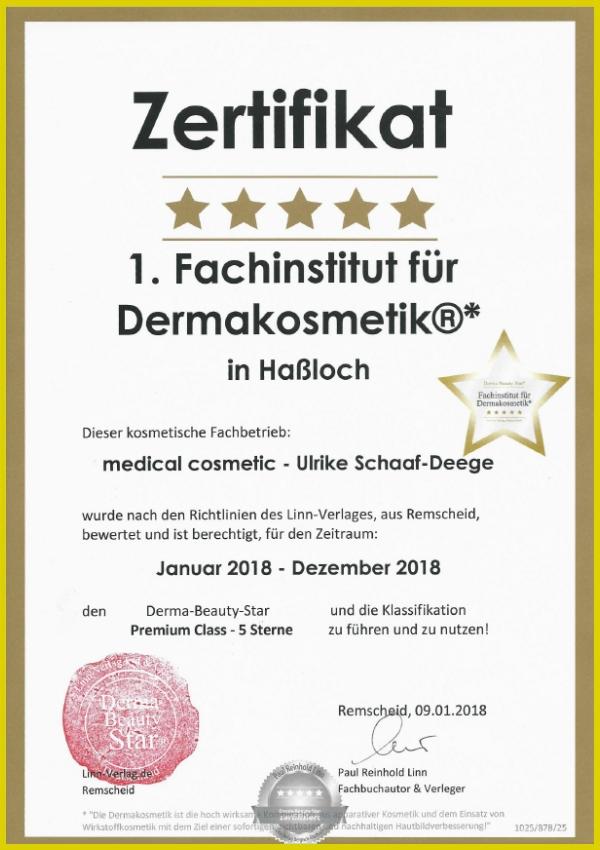 1. Fachinstitut 2018